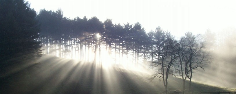 sunrise_pines_7